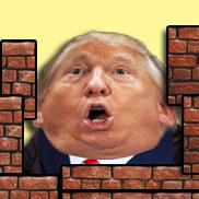 Trumpty Dumpty Wall